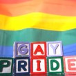 Rainbow flag moving in the breeze with gay pride blocks in front — Stock Video #25671611