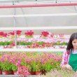 Stock Video: Assistant standing at greenhouse working