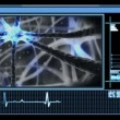 Stock Video: Digital interface showing neuron pulsing through nervous system