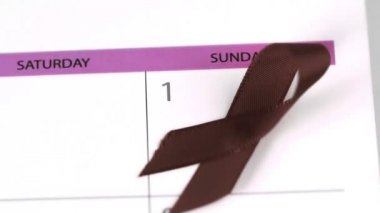 Red ribbon symbol for Aids falling on a calendar — Stock Video