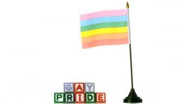 Bandeira de arco-íris ao vento ao lado de blocos de orgulho gay em fundo branco — Vídeo stock