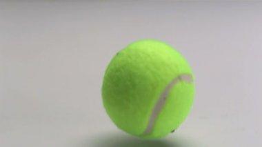 Tenisový míč padající — Stock video