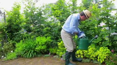 Man watering his plants — Stock Video