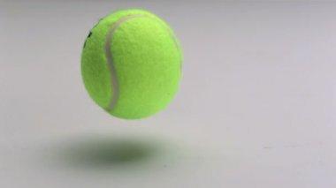 Tennisboll studsar på golvet — Stockvideo