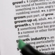 Growth highlighted in green — Vídeo de stock