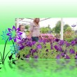 Stock Video: Garden center montage
