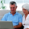 Retired couple using laptop together — Stock Video