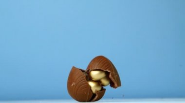 Chocolate easter egg falling against blue background — Stock Video