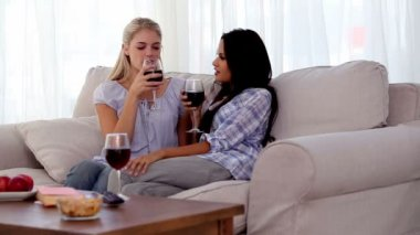 Attractive friends clinking their glasses of red wine together — Stock Video