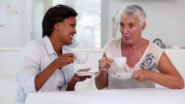 Two mature women gossiping during afternoon tea — Stock Video