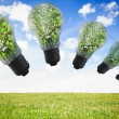 Light bulbs with plants inside — Stock Photo