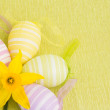 Yellow flower and easter eggs — Stock Photo