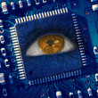 Brown eye in middle of blue circuit board — Foto de Stock