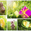 Stock Photo: Collage of easter chocolate