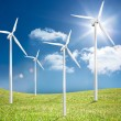 Four wind turbines in a field — Stock Photo