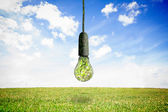 Light bulb with green leaves inside — Stock Photo