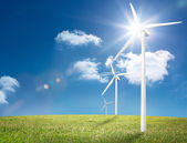 Wind turbines in a field — Stock Photo