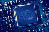 Cerveau imprimé — Photo