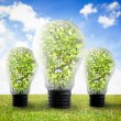 Three big light bulbs on the grass — Stock Photo