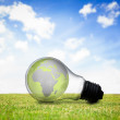 Stock Photo: Earth inside light bulb