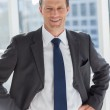 Smiling businessman with his hands on hips — Stock Photo #25723769