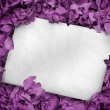 White poster buried into purple leaves — Stock Photo