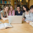 Group of students learning in a library — Stock Photo