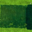 Stock Photo: Paint roller over grass