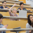 Students having a lesson in the lecture hall — Stock Photo #25732911