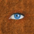 Blue eye over brown texture — Foto de Stock