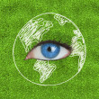 Stock Photo: Blue eye surrounded by drawing of Earth
