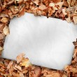 White poster buried into dead leaves — Stock Photo #25733907