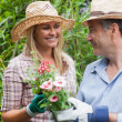 Stock Photo: Man and woman holding a flower pot