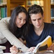 Two students studying in a library — Stock Photo