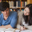 Two concentrated students learning — Stock Photo