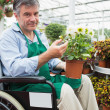 Man in wheelchair holding potted plant in garden center — Foto Stock