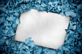 White poster buried into blue leaves — Stock Photo