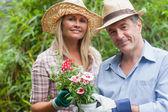 Blonde woman and man holding potted plant — Stock Photo