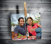 Ripped photo of couple hung with a peg — Stock Photo