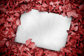 White poster buried into red leaves — Stock Photo