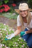 Woman gardening and touching flower — Stock Photo