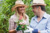 Man and woman holding a flower pot — Stock Photo