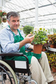 Man in wheelchair holding potted plant in garden center — Stock Photo