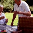 Mature couple having a picnic with white wine — Stock Video