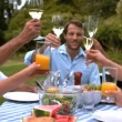 Cheerful family clinking glasses — Stock Video