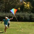 Little girl running after her brother playing with a kite — Stock Video #27022055