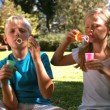 Siblings having fun with bubbles — Stock Video