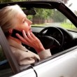 Woman on the phone sitting in her car — Stock Video