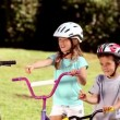 Parents and children pointing the way to go while they are riding bicycle — Stock Video