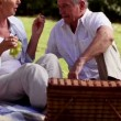Stock Video: Elderly couple eating grapes at picnic